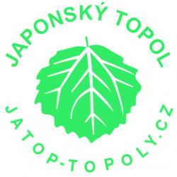 Japonský topol sazenice prostokořené nad 80cm